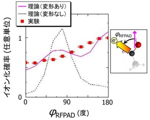 イオン化の分子座標系角度分布の実験結果