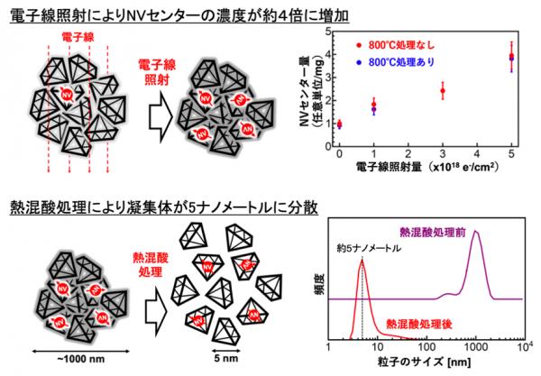 1000ナノメートル程度に凝集したナノダイヤモンドが熱混酸処理で約5ナノメートルの単一サイズのナノダイヤモンドに分散したことがわかる