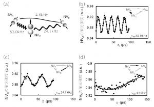 電子電子二重共鳴(DEER)スペクトル