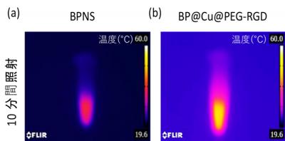 BPNS および BP@Cu@PEG-RGDの 溶液それぞれに、近赤外レーザーを照射した結果