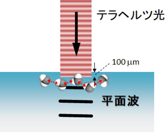 図2:テラヘルツ光照射による光音響波発生法の概念図