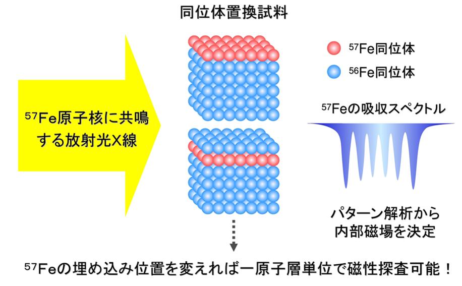 メスバウアー分光法による同位体置換試料を用いた原子層分解磁気構造解析法