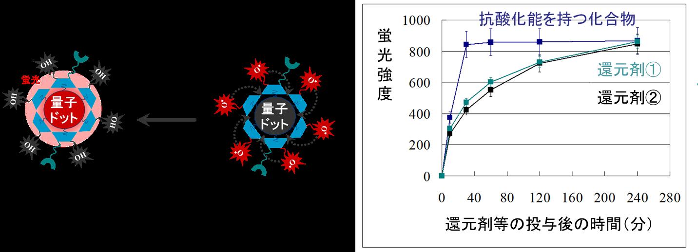 図4. 量子センサーの還元剤に対する反応