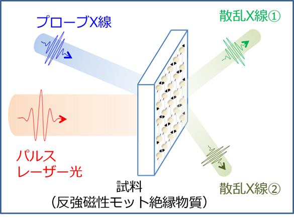 本研究でシミュレーションを行った計測の模式図