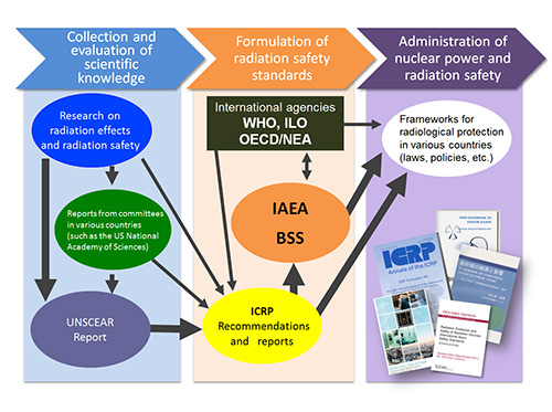photo of Japan's functions as a hub in the international information network on radiological protection1