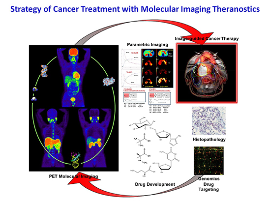 photo of Strategy of Cancer Treatment with Molecular Imaging Theranostics